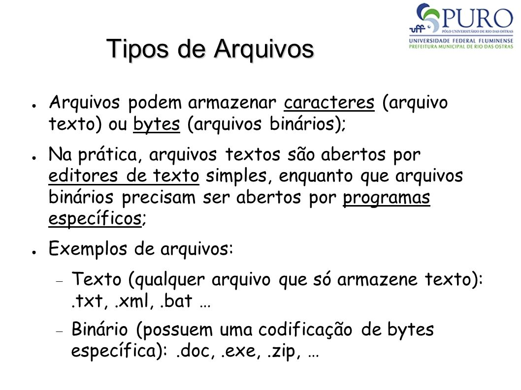 Tipos de Arquivos Arquivos podem armazenar caracteres (arquivo texto) ou bytes (arquivos binários); Na prática, arquivos textos são abertos por editor