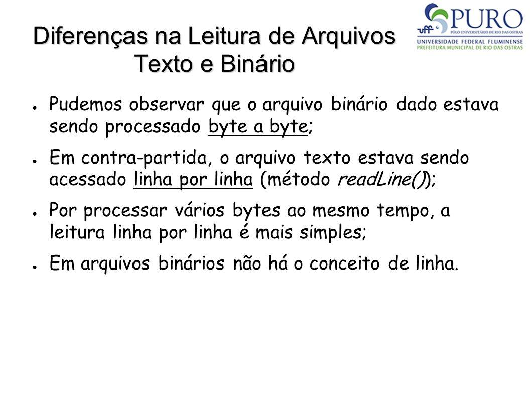 Diferenças na Leitura de Arquivos Texto e Binário Pudemos observar que o arquivo binário dado estava sendo processado byte a byte; Em contra-partida,