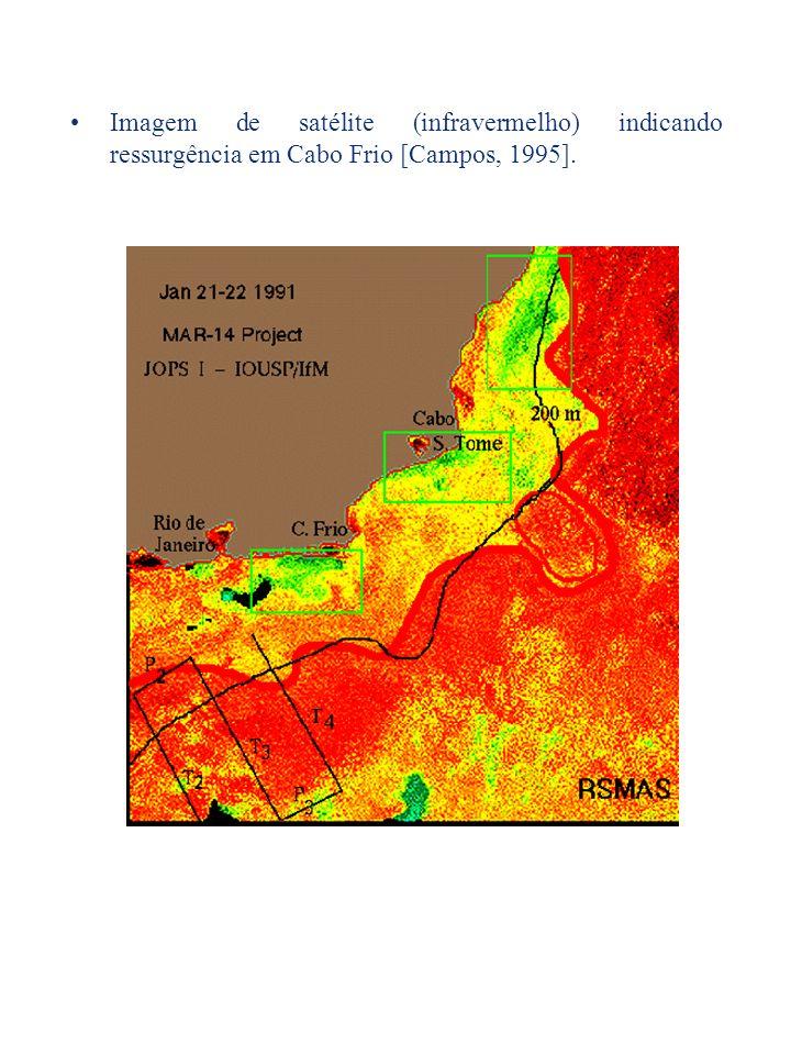 Imagem de satélite (infravermelho) indicando ressurgência em Cabo Frio [Campos, 1995].