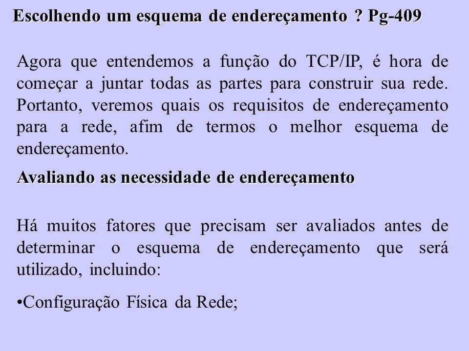 Escolhendo um esquema de endereçamento ? Pg-409 Agora que entendemos a função do TCP/IP, é hora de começar a juntar todas as partes para construir sua