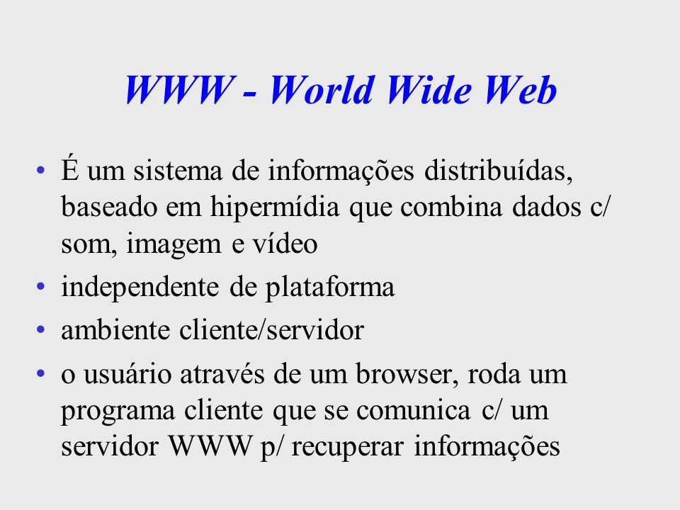 WWW - World Wide Web o browser é um software que permite folhear documentos Hipermídia ex de browser: NCSA, Netscape, Internet Explorer, etc um cliente pode interagir c/ vários servidores ao mesmo tempo um servidor WWW é um programa que fica a espera de requisições do usuário