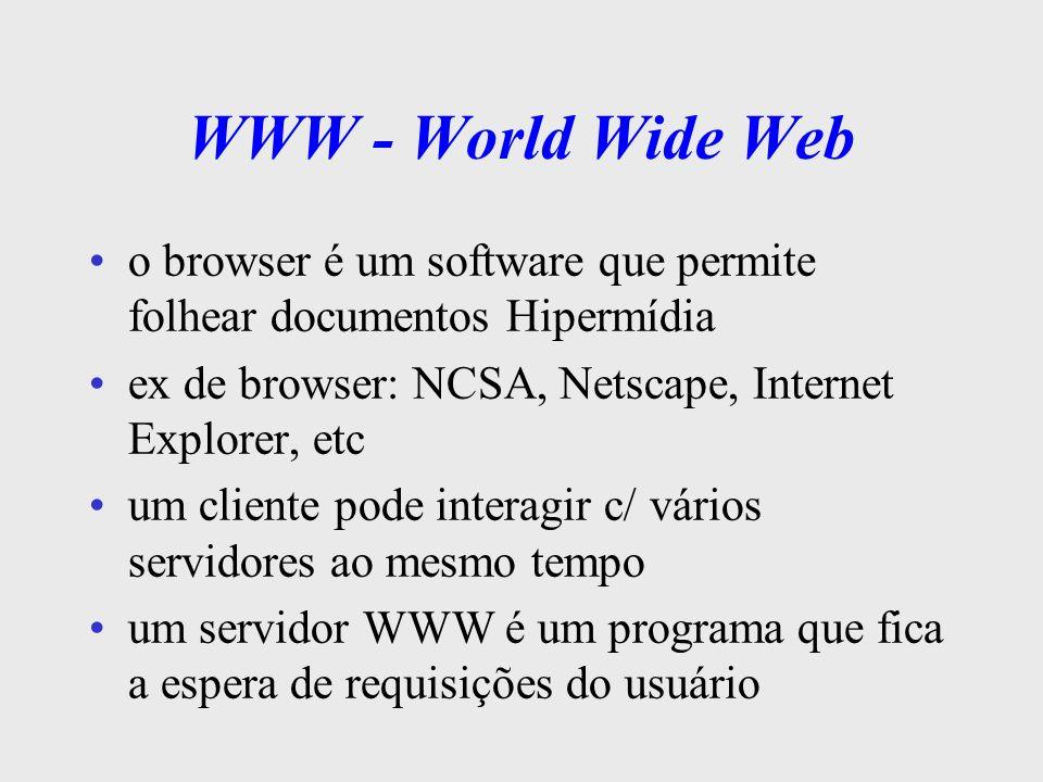 WWW - World Wide Web a comunicação entre o browser e o servidor Web (WWW) é através do protocolo HTTP HTTP - Hiper Text Transfer Protocol p/ recuperar um documento em um servidor Web, deve- se conhecer o endereço URL URL - Uniform Resource Locator identifica não só servidor, mas também o domínio e o documento: – www.climerh.rct-sc.br/imagens/g1910960600.gif/ (servidor)(....domínio.....) (...documento...)