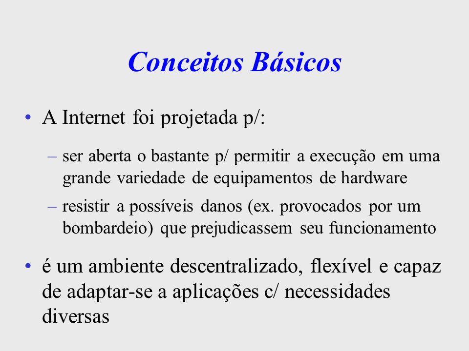 Conceitos Básicos Diversos grupos orientam o crescimento da Internet, ajudando a estabelecer padrões e a coordenar e orientar o uso: –IAB (Internet Activities Board - Internet Architecture Board): IRTF (Internet Research Task Force); IETF (Internet Engineering Task Force); –Internet Society –InterNIC (Network Information Centers –World Wide Web Consortium (W3C)