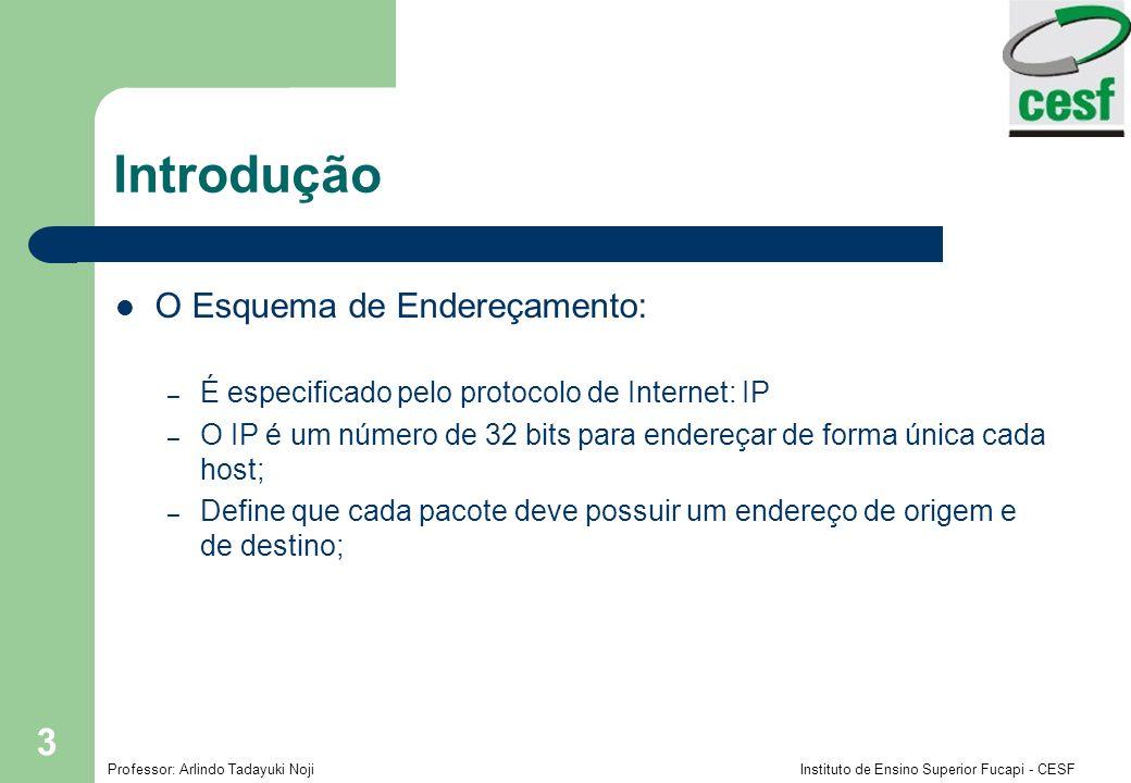 Professor: Arlindo Tadayuki Noji Instituto de Ensino Superior Fucapi - CESF 4 Introdução A hierarquia de endereçamento IP: – Por questões de eficiência, o endereço IP é definido em duas partes, de prefixos e sufixos; – Os prefixos são responsáveis por determinar as redes que os computadores estão acoplados; – Os sufixos são responsáveis por informar cada computador acoplado em cada rede;