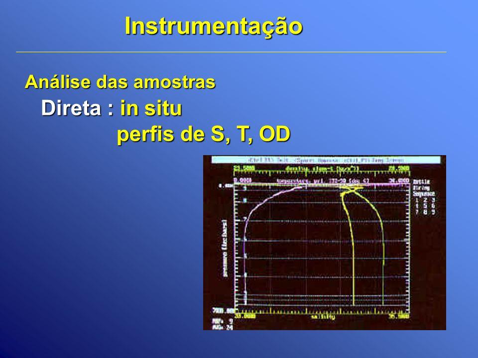 Direta : in situ perfis de S, T, OD Análise das amostras Instrumentação
