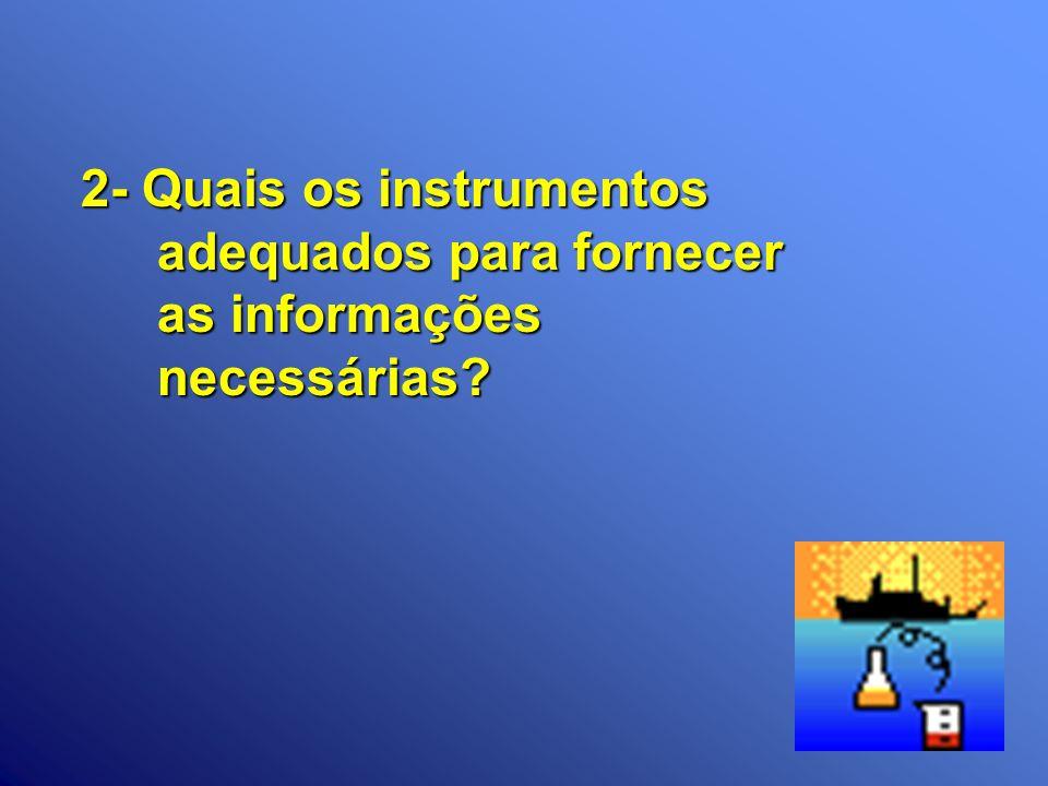 2- Quais os instrumentos adequados para fornecer as informações necessárias?