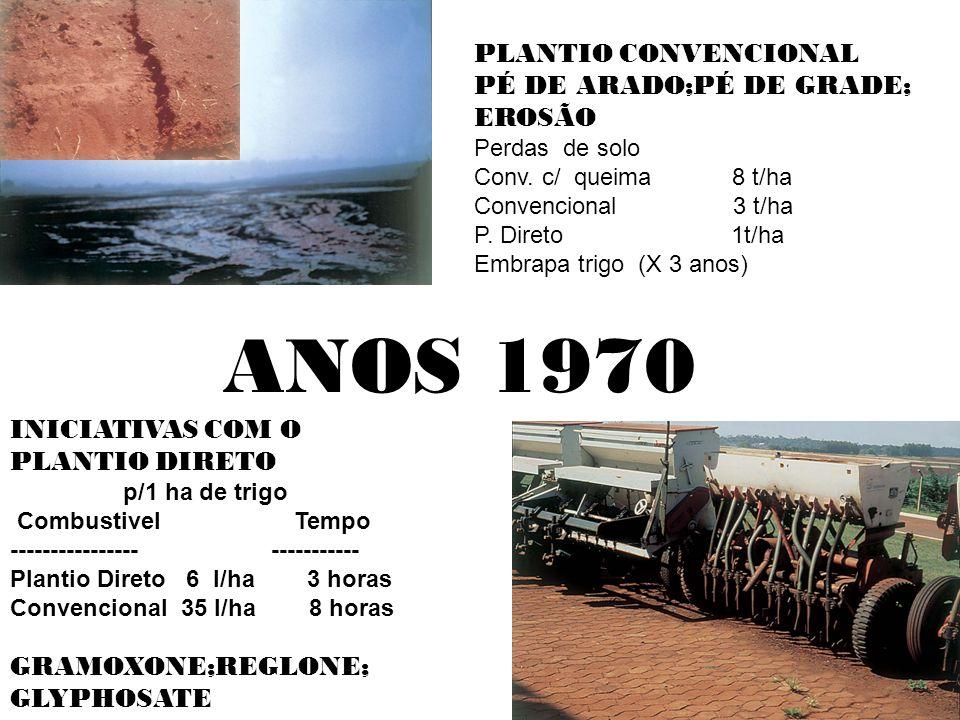 ANOS 1970 PLANTIO CONVENCIONAL PÉ DE ARADO;PÉ DE GRADE; EROSÃO Perdas de solo Conv.