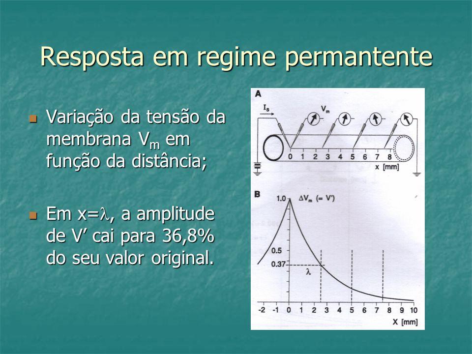 Resposta em regime permantente Variação da tensão da membrana V m em função da distância; Variação da tensão da membrana V m em função da distância; E