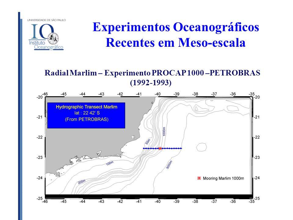 Experimentos Oceanográficos Recentes em Meso-escala Radial Marlim – Experimento PROCAP 1000 –PETROBRAS (1992-1993)
