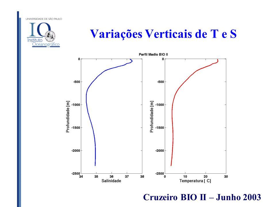 Variações Verticais de T e S Cruzeiro BIO II – Junho 2003