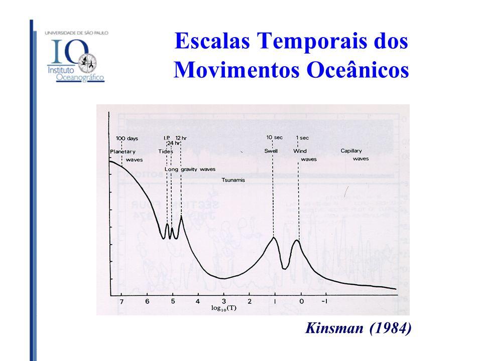 Elementos de Análises de Escalas As leis fundamentais que governam os movimentos nos oceanos satisfazem ao princípio da homogeneidade dimensional.