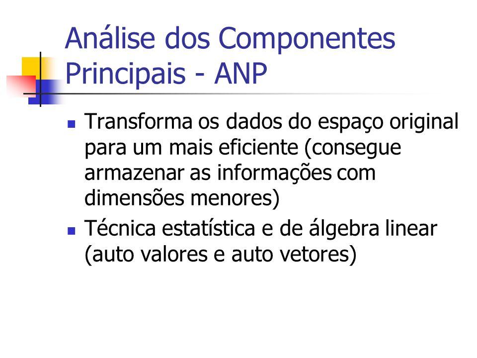Análise dos Componentes Principais - ANP Transforma os dados do espaço original para um mais eficiente (consegue armazenar as informações com dimensõe