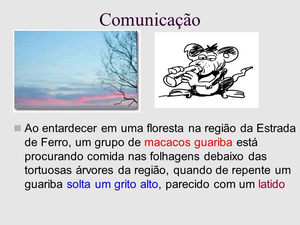 Comunicação Ao entardecer em uma floresta na região da Estrada de Ferro, um grupo de macacos guariba está procurando comida nas folhagens debaixo das tortuosas árvores da região, quando de repente um guariba solta um grito alto, parecido com um latido