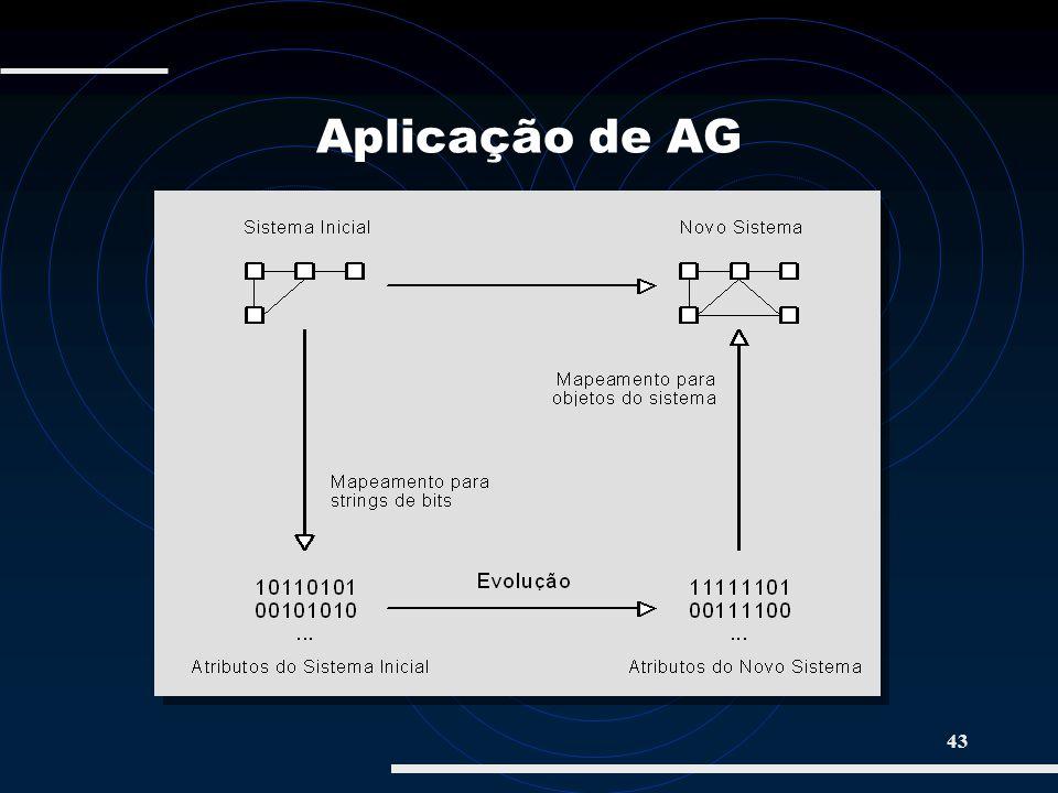 43 Aplicação de AG