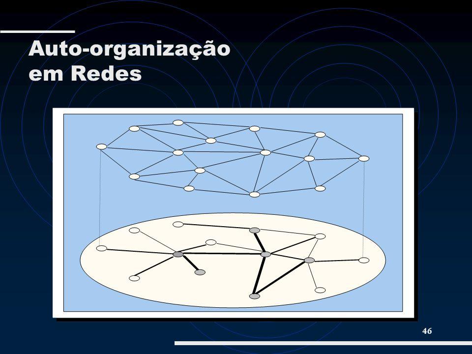 46 Auto-organização em Redes