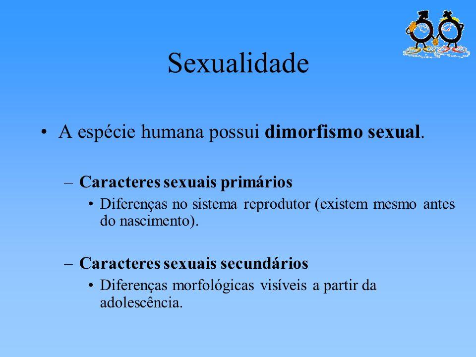 Sexualidade A espécie humana possui dimorfismo sexual. –Caracteres sexuais primários Diferenças no sistema reprodutor (existem mesmo antes do nascimen