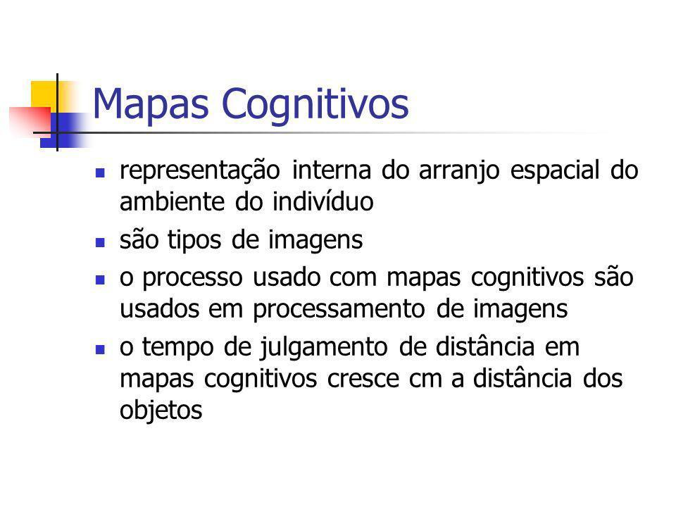 representação interna do arranjo espacial do ambiente do indivíduo são tipos de imagens o processo usado com mapas cognitivos são usados em processame