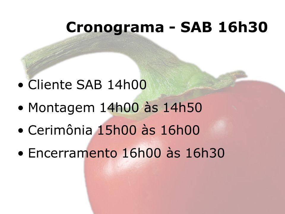 Cronograma - SAB 16h30 Cliente SAB 14h00 Montagem 14h00 às 14h50 Cerimônia 15h00 às 16h00 Encerramento 16h00 às 16h30