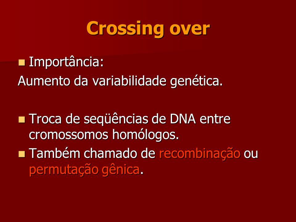 Prófase 1 Fase mais demorada. Fase mais demorada. Muito importante – crossing over Muito importante – crossing over Condensação dos cromossomos Conden