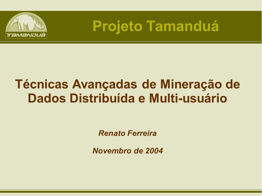Técnicas Avançadas de Mineração de Dados Distribuída e Multi-usuário Renato Ferreira Novembro de 2004 Projeto Tamanduá