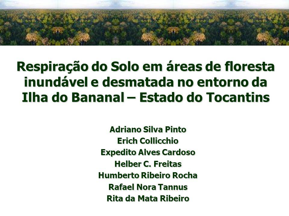 Respiração do Solo em áreas de floresta inundável e desmatada no entorno da Ilha do Bananal – Estado do Tocantins Adriano Silva Pinto Erich Collicchio