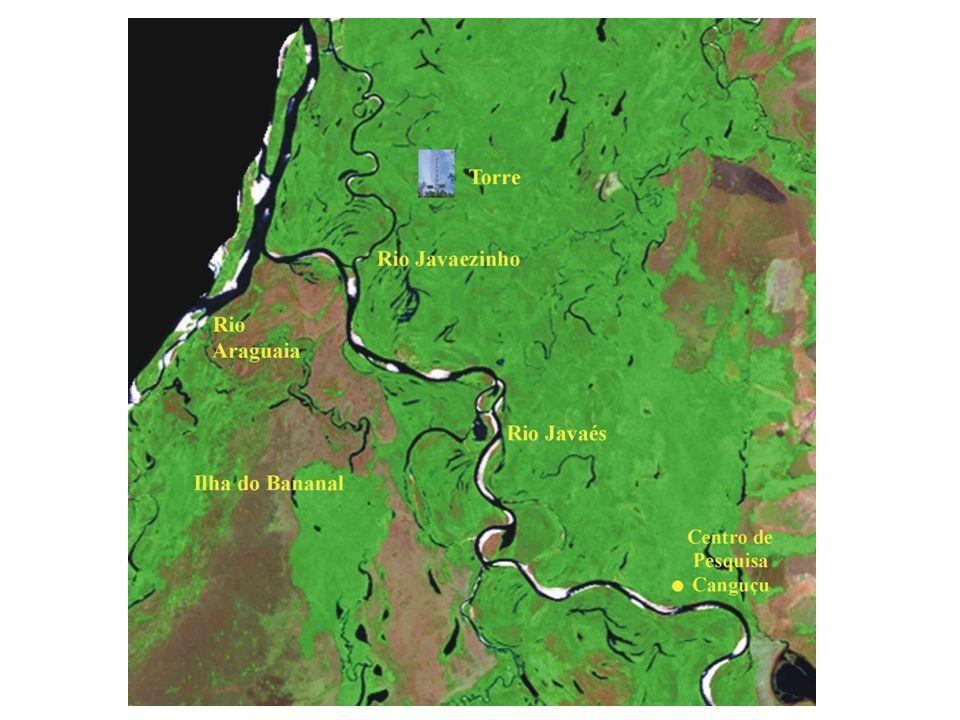 AGRADECIMENTOS Universidade Federal do Tocantins