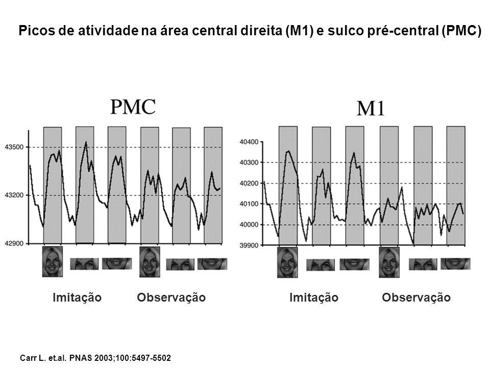 Picos de atividade na área central direita (M1) e sulco pré-central (PMC) Carr L. et.al. PNAS 2003;100:5497-5502 ImitaçãoObservaçãoImitaçãoObservação