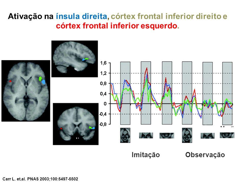Ativação na ínsula direita, córtex frontal inferior direito e córtex frontal inferior esquerdo. Carr L. et.al. PNAS 2003;100:5497-5502 ImitaçãoObserva