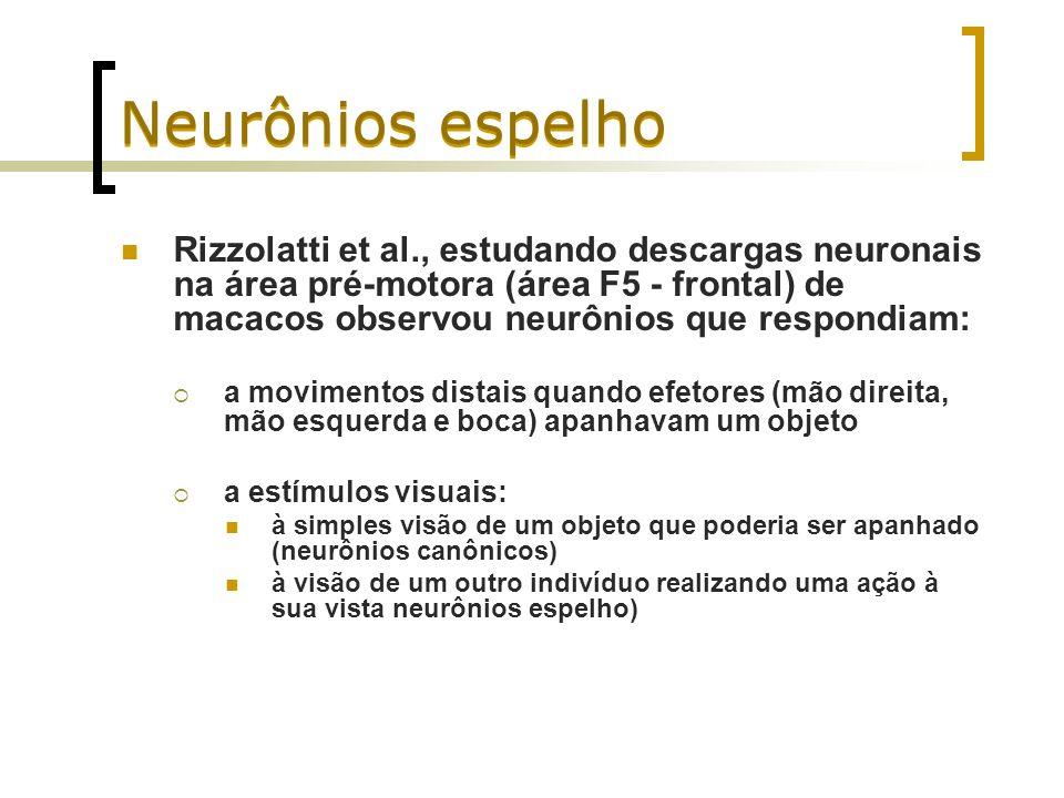 Neurônios espelho Rizzolatti et al., estudando descargas neuronais na área pré-motora (área F5 - frontal) de macacos observou neurônios que respondiam