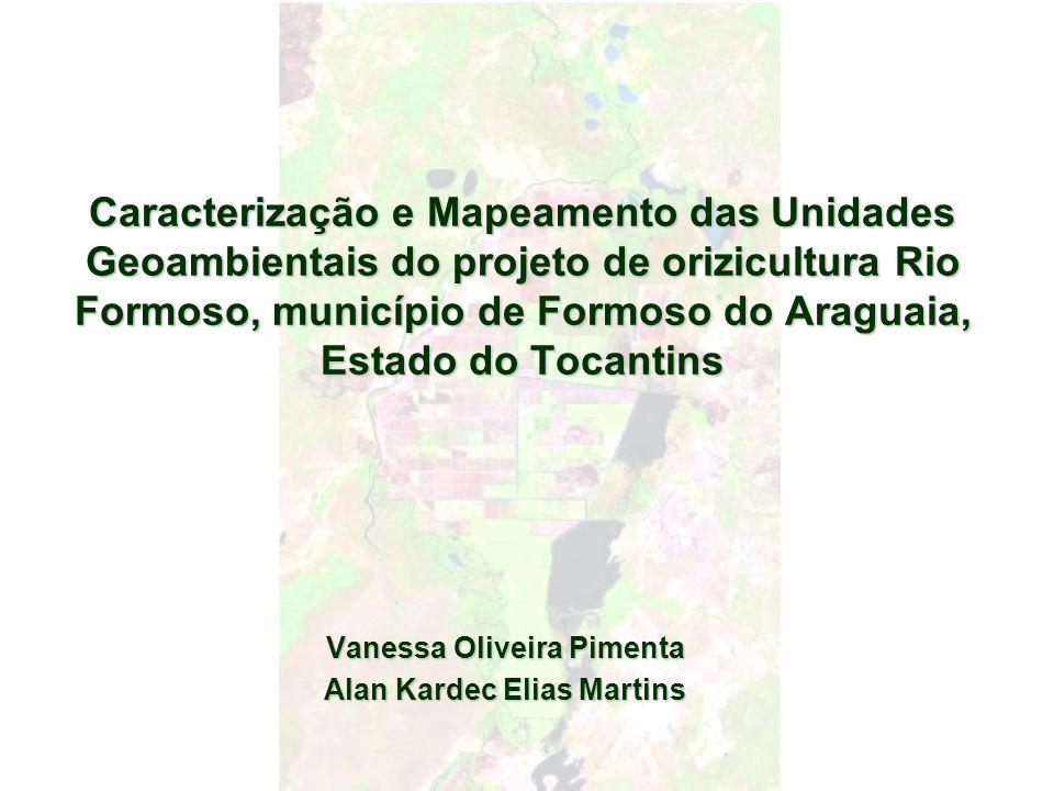 Caracterização e Mapeamento das Unidades Geoambientais do projeto de orizicultura Rio Formoso, município de Formoso do Araguaia, Estado do Tocantins V