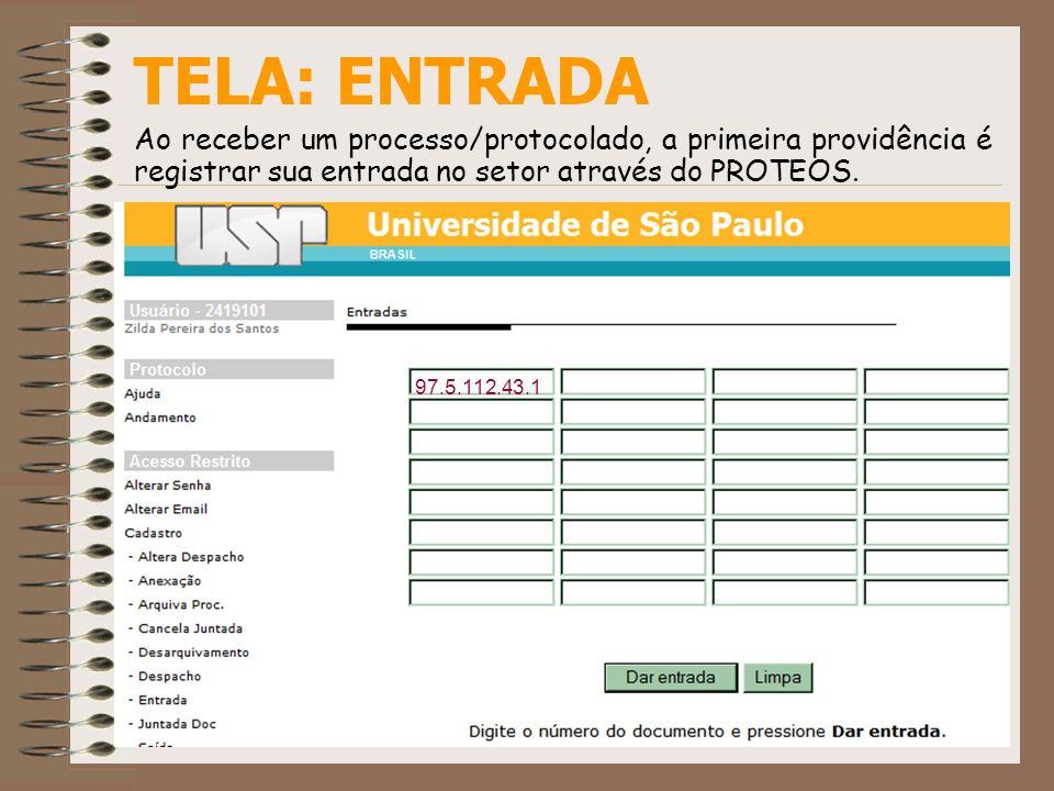 TELA: ENTRADA Ao receber um processo/protocolado, a primeira providência é registrar sua entrada no setor através do PROTEOS. 97.5.112.43.1