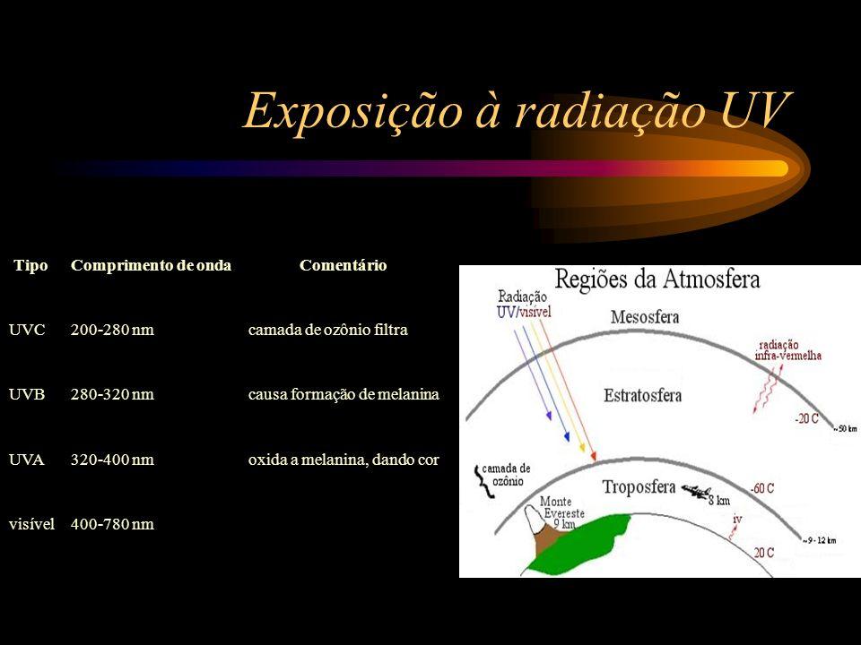 Exposição à radiação UV TipoComprimento de ondaComentário UVC200-280 nmcamada de ozônio filtra UVB280-320 nmcausa formação de melanina UVA320-400 nmox