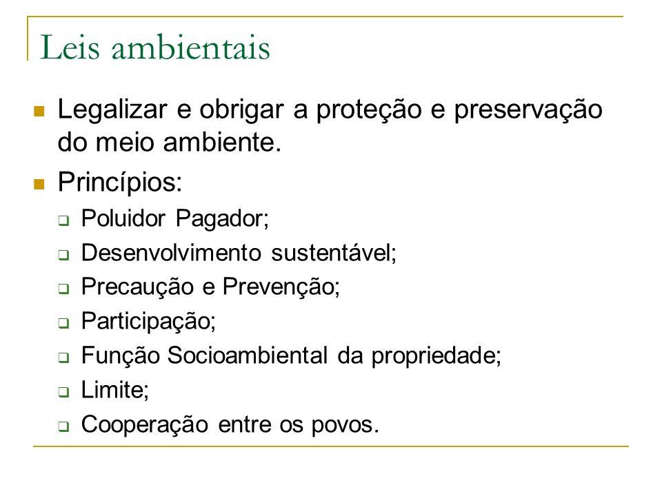 Meio ambiente na Constituição CAPÍTULO VI DO MEIO AMBIENTE Art.