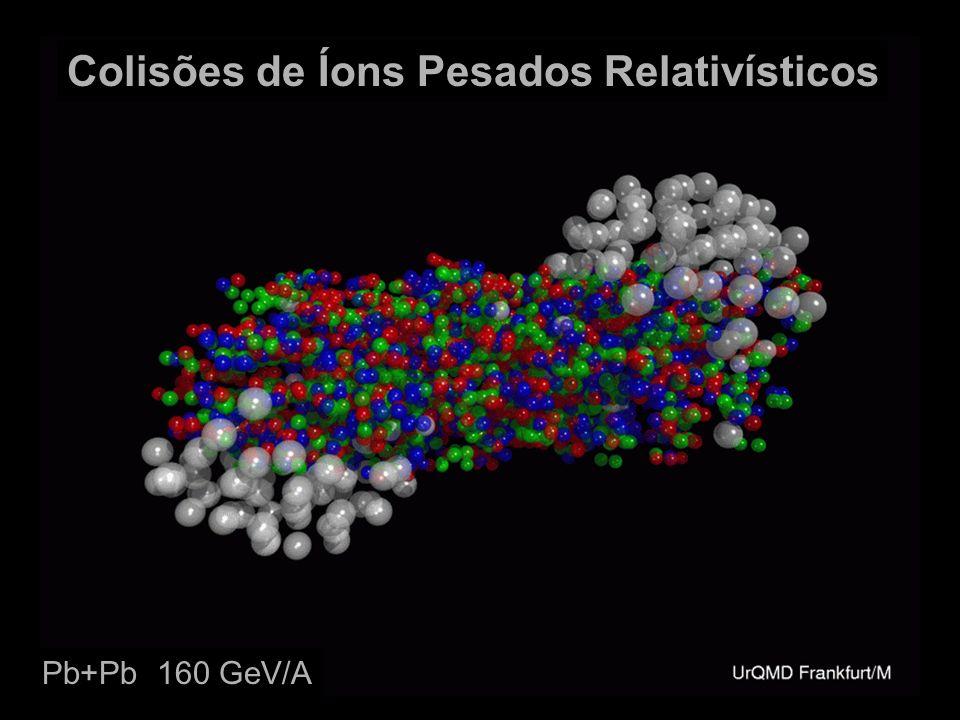 Colisões de Íons Pesados Relativísticos Pb+Pb 160 GeV/A