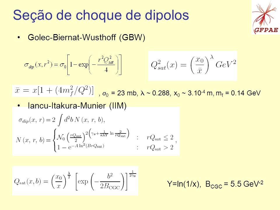 Seção de choque de dipolos Golec-Biernat-Wusthoff (GBW) Iancu-Itakura-Munier (IIM), 0 = 23 mb, ~ 0.288, x 0 ~ 3.10 -4 m, m f = 0.14 GeV Y=ln(1/x), B C