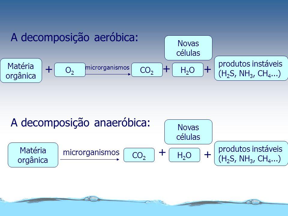 Demanda Bioquímica de Oxigênio (DBO) Definição: Quantidade de oxigênio requerida por microrganismos aeróbios para a oxidação de compostos orgânicos pr