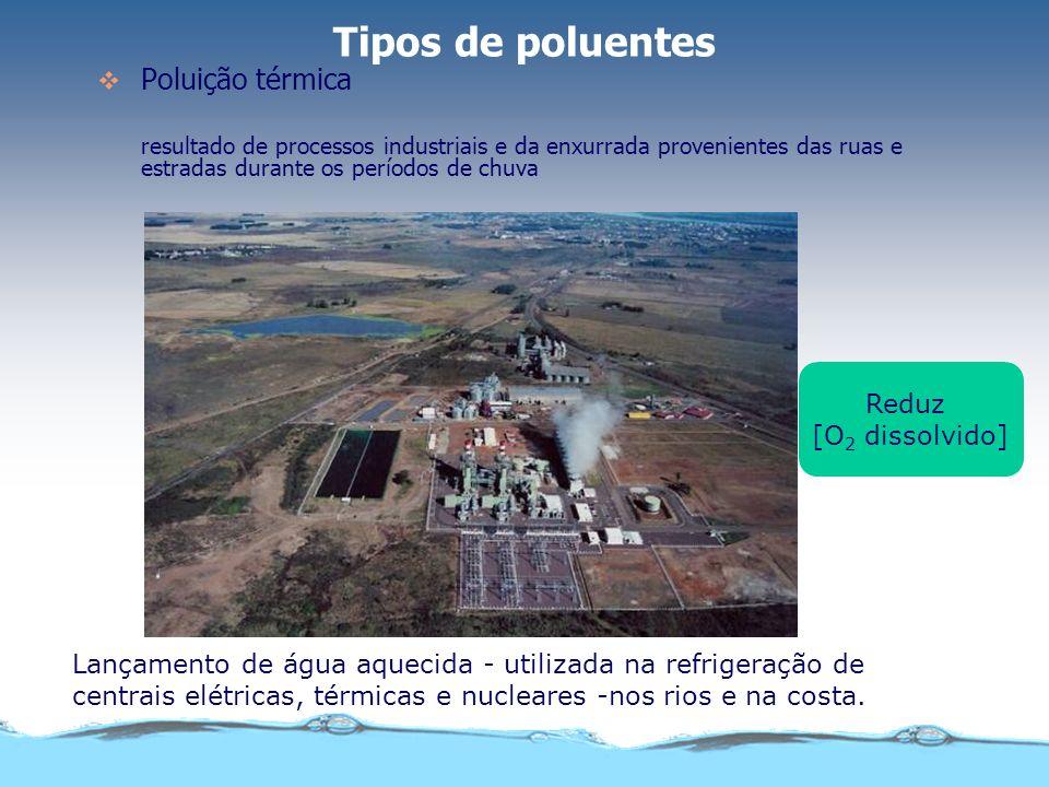 Tipos de poluentes Poluentes patogênicos a) Vírus b) Bactérias c) Helmintos ou vermes parasitas