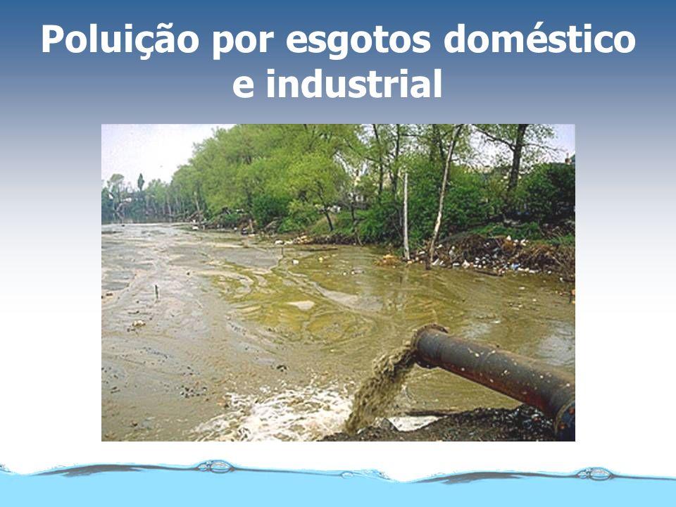 Poluição por esgotos doméstico e industrial