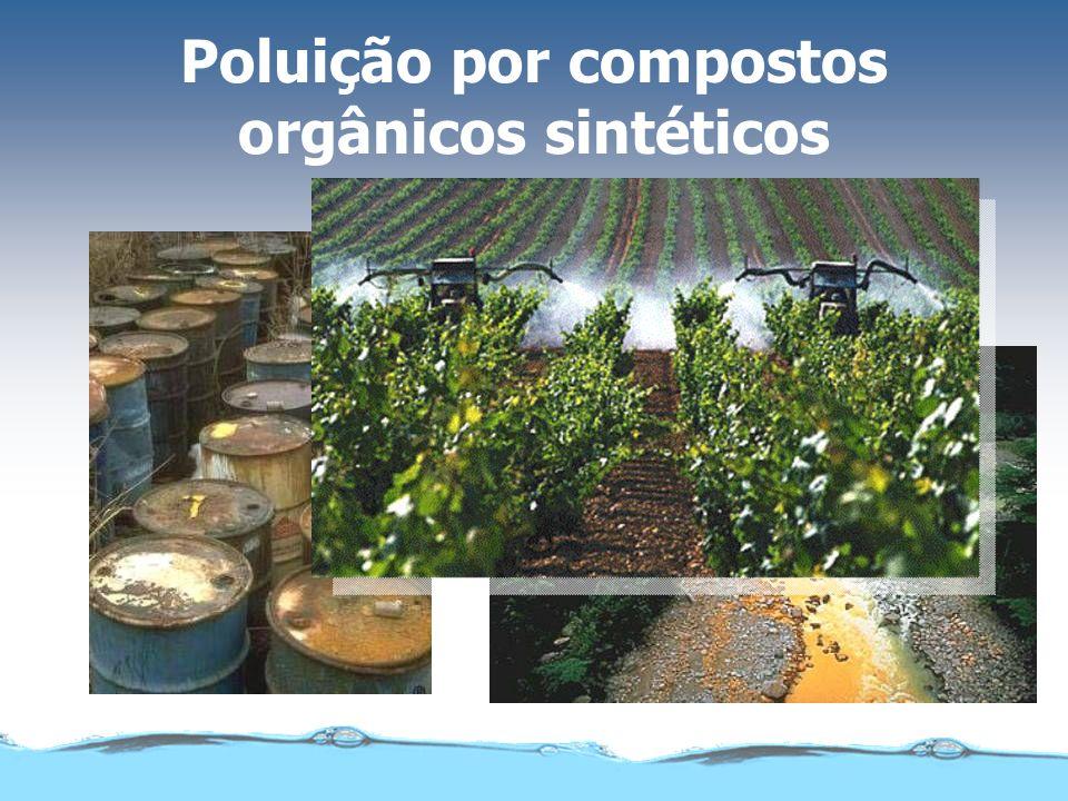 Matéria orgânica biodegradável Explosão na população de microrganismos Consumo de oxigênio Bactérias, vírus, larvas e parasitas Coliformes fecais doen