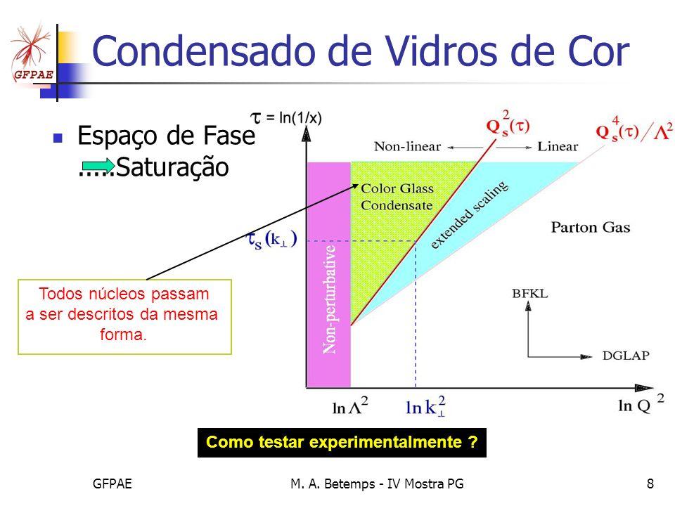 GFPAEM. A. Betemps - IV Mostra PG8 Condensado de Vidros de Cor Espaço de Fase.....Saturação Todos núcleos passam a ser descritos da mesma forma. Como