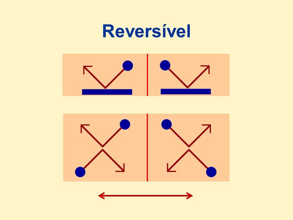 Reversível