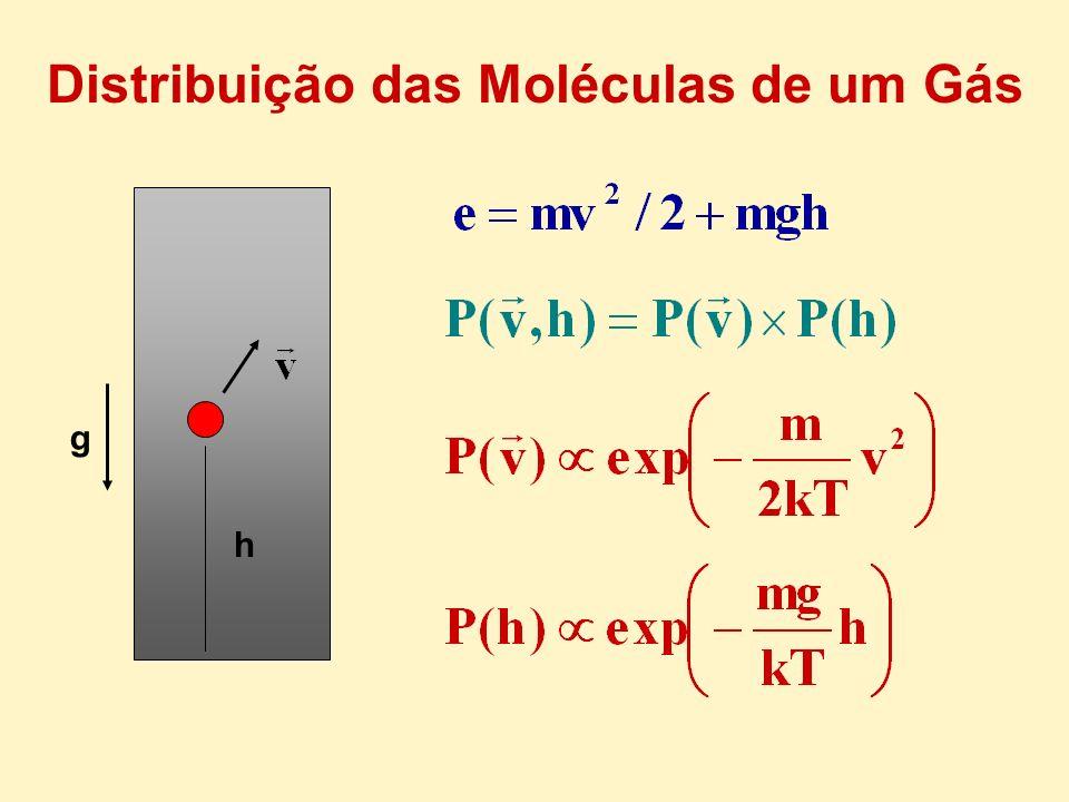 h g Distribuição das Moléculas de um Gás