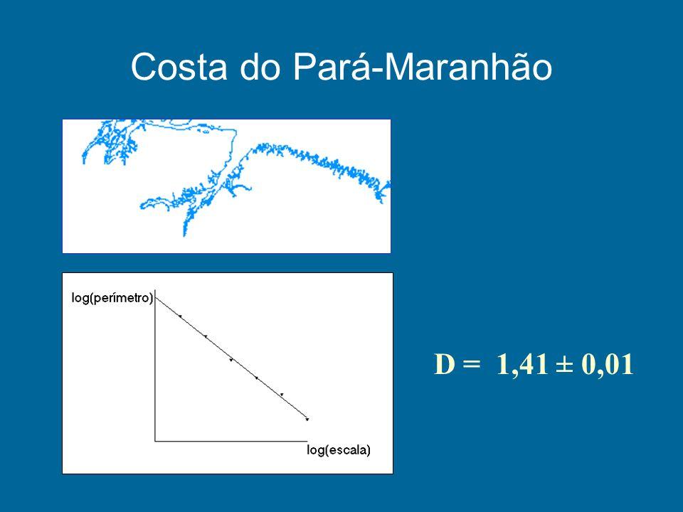 Costa do Pará-Maranhão D = 1,41 ± 0,01