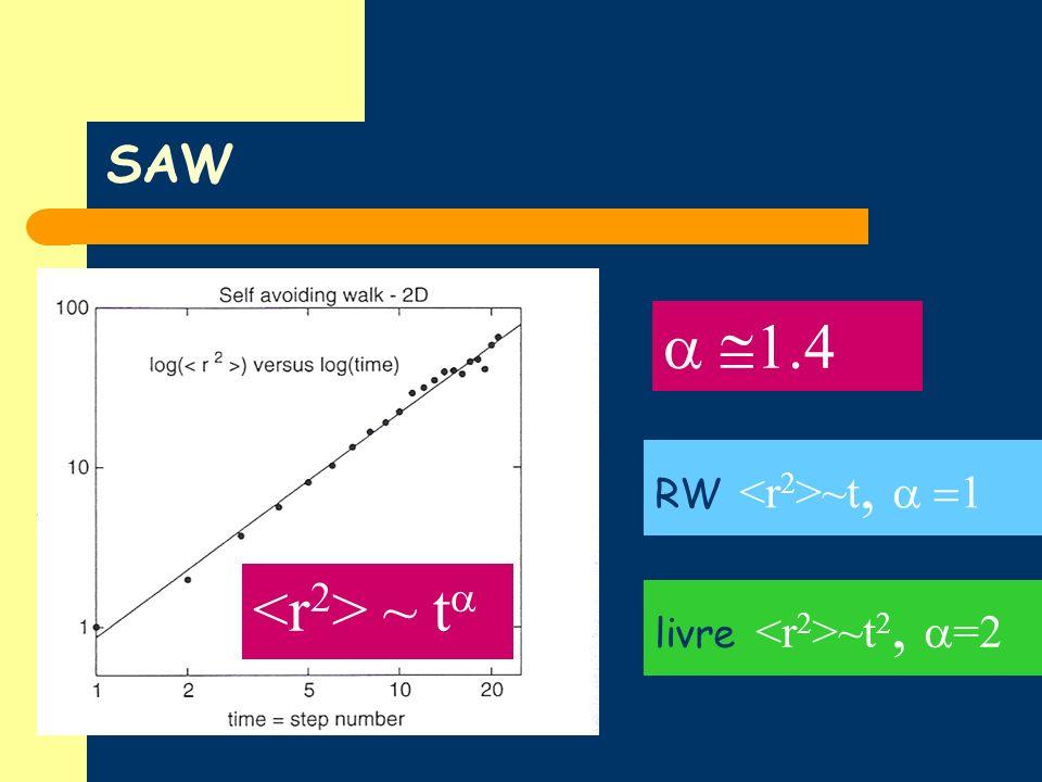 SAW ~ t RW ~t, 1 1.4 livre ~t 2, =2