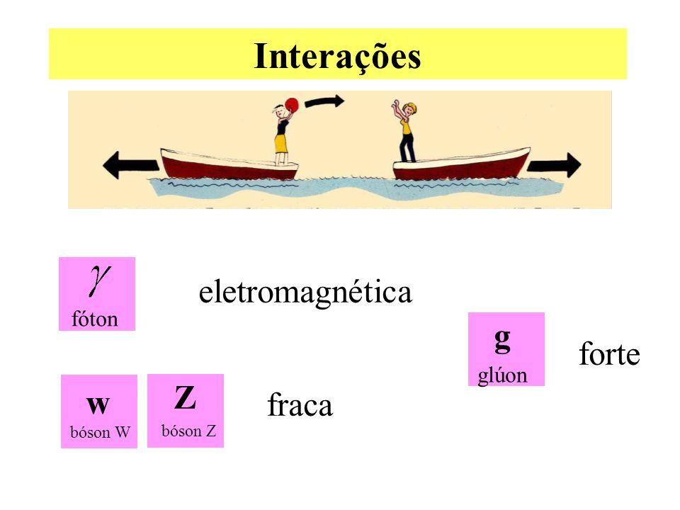 Interações glúon g fóton w bóson W bóson Z Z eletromagnética fraca forte