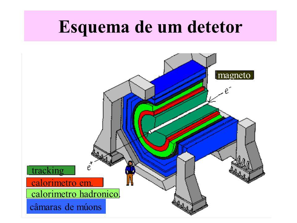 Esquema de um detetor magneto tracking calorimetro hadronico. calorimetro em. câmaras de múons