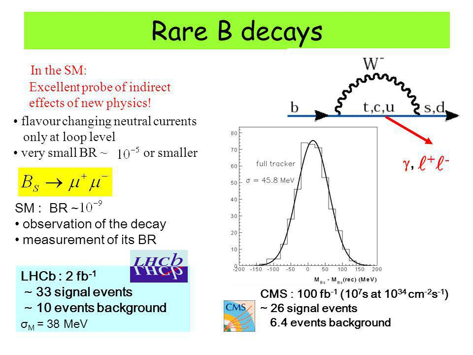 Rare B decays flavour changing neutral currents only at loop level very small BR ~ or smaller In the SM: Excellent probe of indirect effects of new physics.