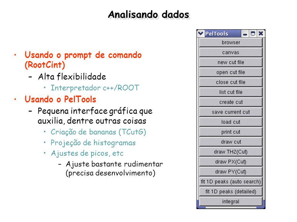 Analisando dados Usando o prompt de comando (RootCint) –Alta flexibilidade Interpretador c++/ROOT Usando o PelTools –Pequena interface gráfica que aux