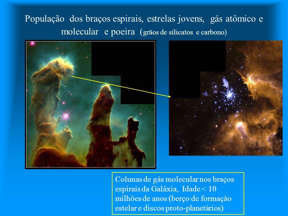 População dos braços espirais, estrelas jovens, gás atômico e molecular e poeira ( grãos de silicatos e carbono) Colunas de gás molecular nos braços e