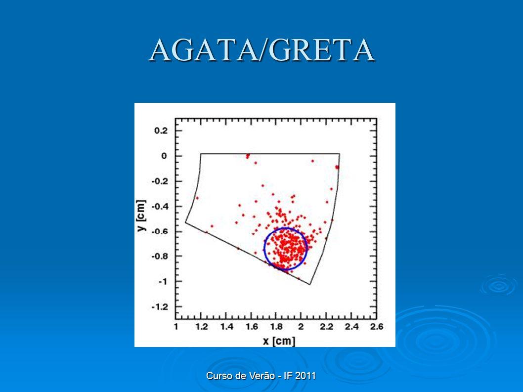 Curso de Verão - IF 2011 AGATA/GRETA